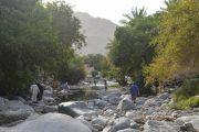 Ain Al Thawrah Hot Spring